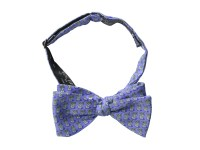 Vineyard Vines Kentucky Derby Mint Julep Bow Tie, Men ...