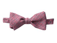 Vineyard Vines Kentucky Derby Horseshoe Geo Bow Tie ...