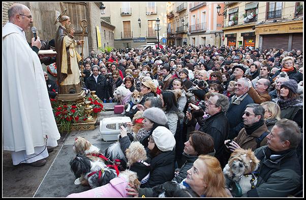 Hogueras de San Antón - Foto de primo.com.es - Párroco de la Iglesia San Pablo dando la bendición multitudinaria a los animales