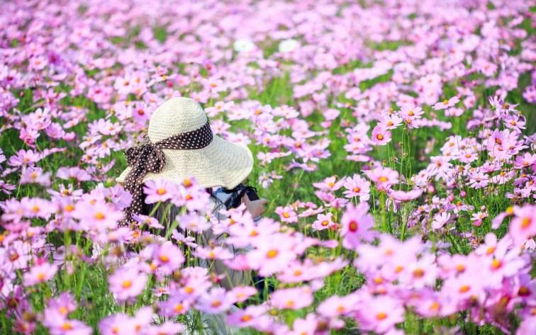 Las 5 enfermedades femeninas más comunes - Alergia