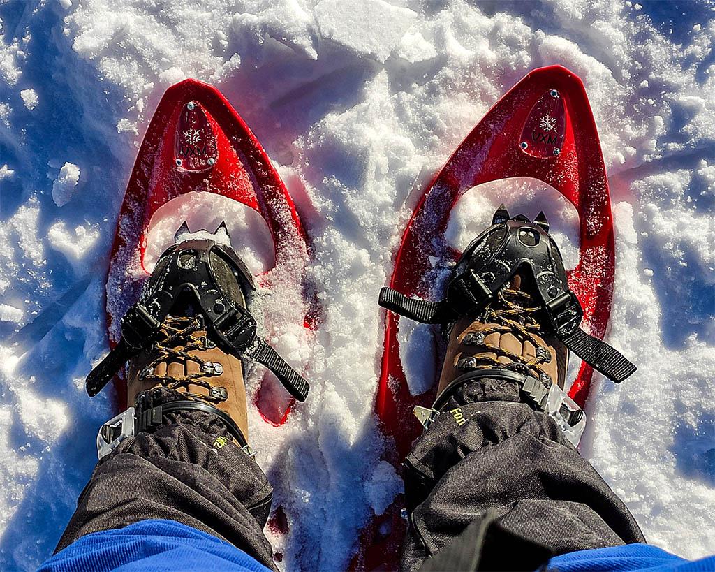 Qué necesitas para una excursión con raquetas de nieve, botas y polainas