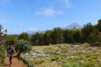 Mount Kilimanjaro Marangu route Tanzania Zara Tours 3