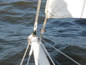 foresail toggle