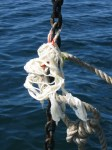 anchor chain snubber