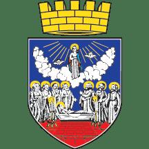 Srednji grb Zrenjanina
