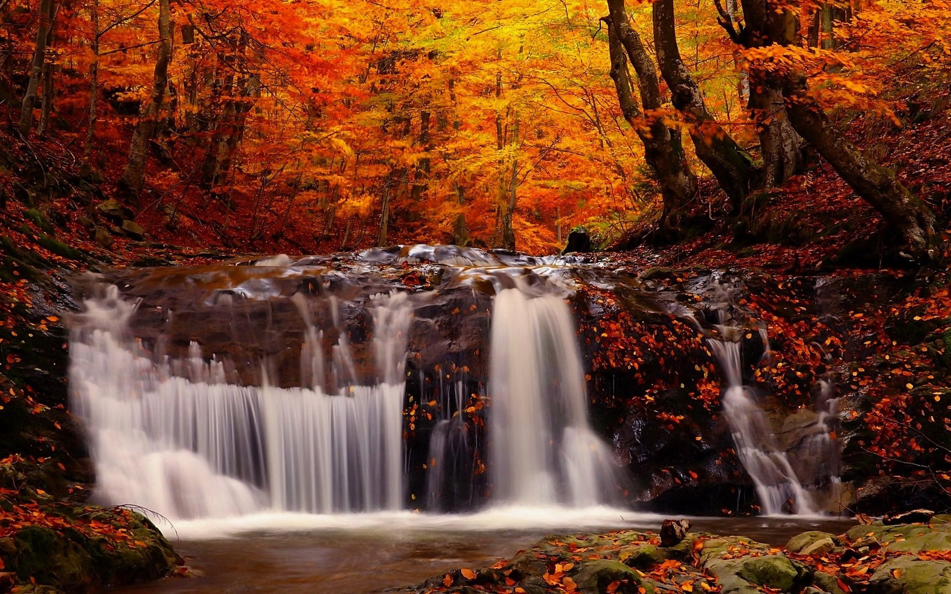 Simple Wallpapers Colors Fall Waterfall On The Rocks In The Autumn Forest Wallpapers And