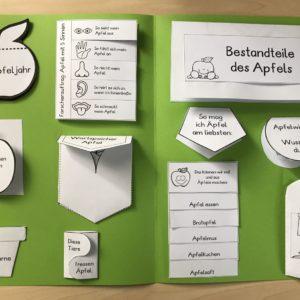 So wie es aussieht, wird die liste heute beständig erweitert: Lapbook Unser Korper Zaubereinmaleins Shop