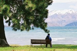 single man on park bench