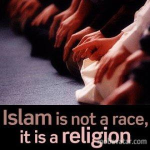 islam race rascism religion cross culture
