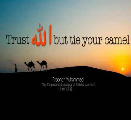 Islamic-Quotes-About-Life-inspirational-Sayings-1