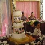 Newlywed Malay couple and the wedding cake