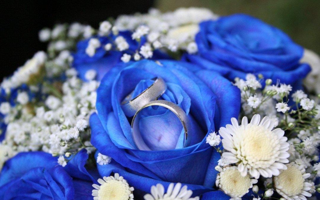 Annonce pour mariage halal les plus lues du mois d'Août 2018