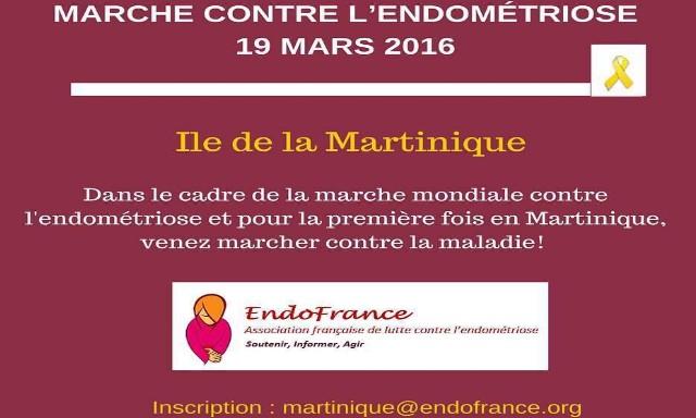 Marche Contre l'Endométriose 19 Mars 2016