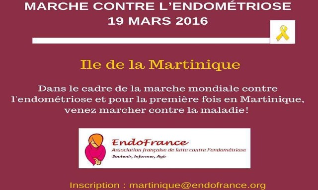 Marche Contre l'Endométriose 19 Mars 2016
