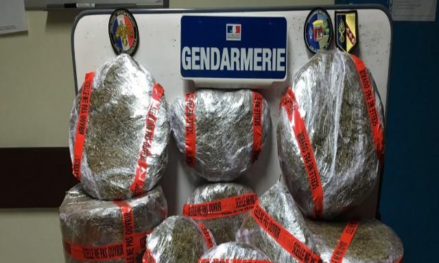 #ZayActu : Démantèlement d'un trafic local de cannabis à Saint-luce | ZayRadio.org