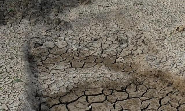 #ZayActu : Alerte sécheresse Restrictions de l'usage de l'eau en Martinique | ZayRadio.org
