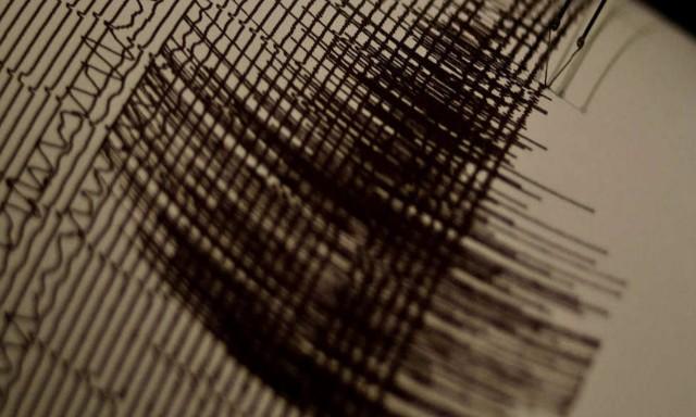 Alerte au tsunami dans tout le Pacifique après un séisme — Nouvelle-Zélande