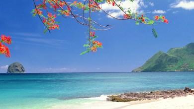 Photo of La Martinique 9ème île la plus attractive des Caraïbes devant la Guadeloupe 11ème
