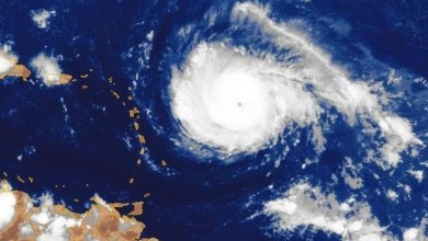 Photo of IRMA devient un puissant ouragan de catégorie 4. La Martinique en vigilance orange