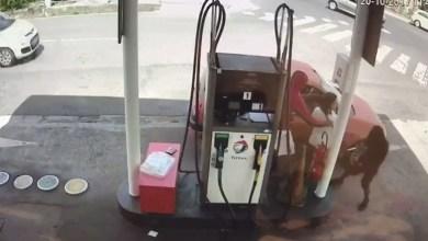 Photo of Deux individus braquent une pompiste dans une station-service au François