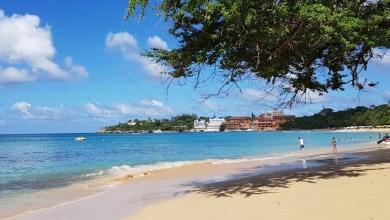 Photo of République Dominicaine : un couple revient de vacances les pieds infestés de vers