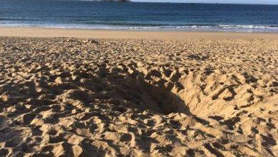 Photo of Dinard : un enfant de 12 ans creuse un trou sur une plage. Il meurt enseveli