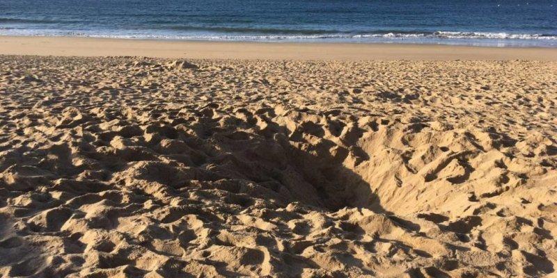 Dinard : un enfant de 12 ans creuse un trou sur une plage. Il meurt enseveli