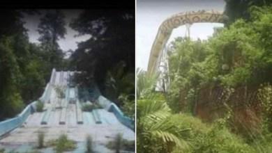 Photo of Des photos du parc aquatique du Carbet Aqwaland 5 ans après sa fermeture