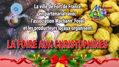 Photo of La foire aux Christophines a débuté, ce jeudi à Fort-de-France