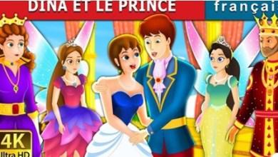 Photo of Dina et le Prince : le racisme s'infiltre maintenant dans des dessins animés pour enfants (VIDÉO)