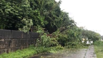 Photo of Un éboulement au quartier La Crique à Trinité bloque totalement la route. Une déviation a été mise en place