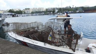 Photo of Destructions de plusieurs nasses illégales dans une zone interdite à la pêche sur le cantonnement de l'îlet à Ramier