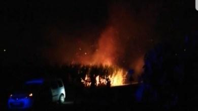 Photo of Un incendie s'est déclaré dans un champ de canne à Cap-Est au François (VIDÉO)