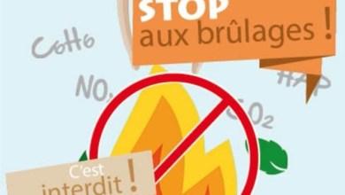 Photo of Le brûlage des déchets verts à l'air libre est strictement interdit en Martinique
