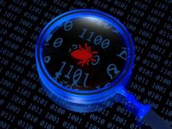 bug discovered (image: Shutterstock)