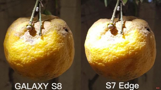 camera: Galaxy S8 compared to the S7 edge (image: XEETECHCARE)