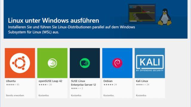 Windows 28 Home: So installiert man Linux  ZDNet.de
