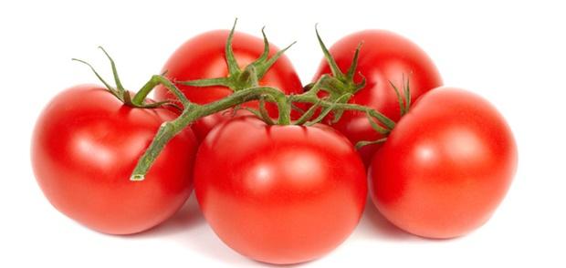 zp paradajz