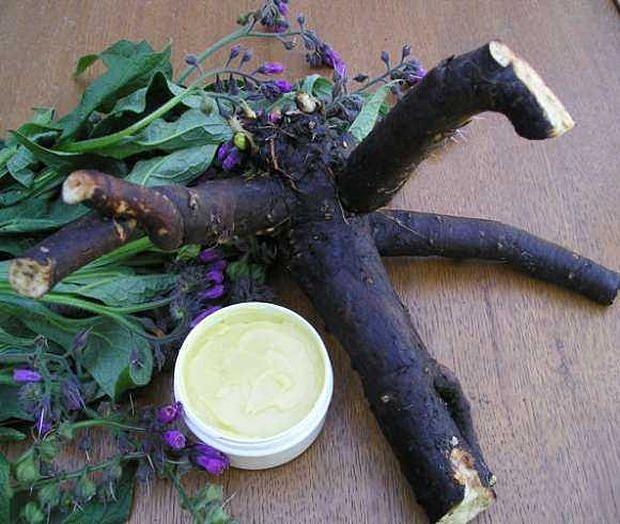 Zovu je najljekovitijom tinkturom svijeta: Jedna biljka i rakija, lijek za sve bolesti! (RECEPT)