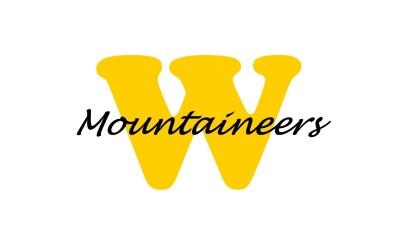 WMS Logo classic