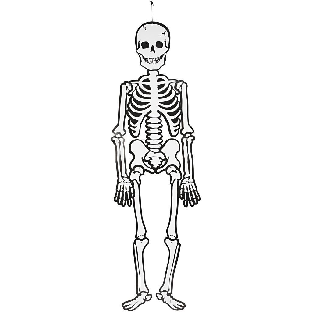 Szkielet Z Papieru 120 Cm Fosforyzuj Cy