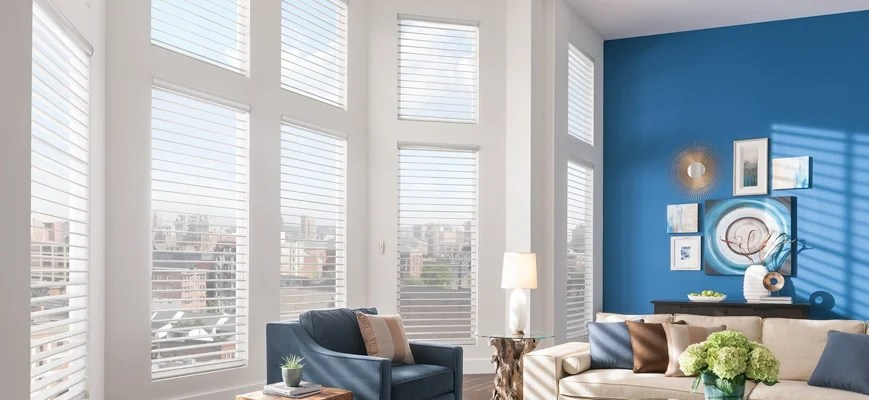 blinds for living room navy blue couch ideas 10 best windows zebrablinds window