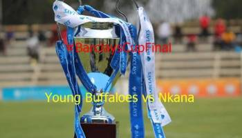 Barclays cup final