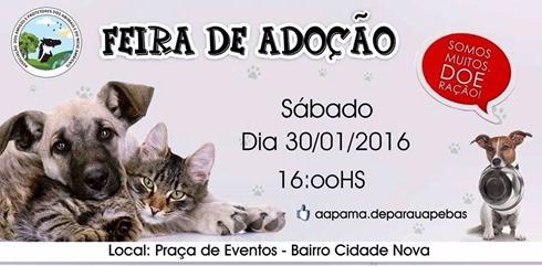 Divulgação_Apama