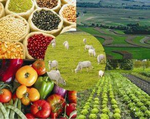 Entidades do agro entregam carta com seis propostas do setor à reforma tributária