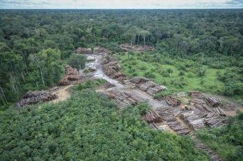 Comissão debate compromissos que o Brasil levará à Conferência do Clima
