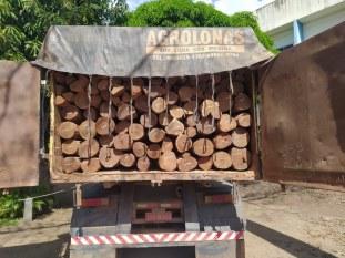 Marabá: PRF apreende 21,95 metros cúbicos de madeira ilegal na BR-155