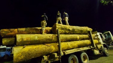 Altamira: PRF apreende 38,78 metros cúbicos de madeira sendo transportada de forma ilegal