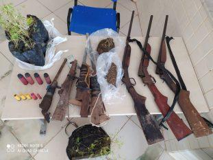Paragominas: PM 'caça' homem e encontra plantio com mais de mil pés de maconha