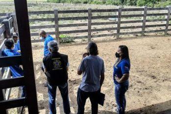 Auditores fiscais do Mapa fazem supervisão no sudeste do Pará